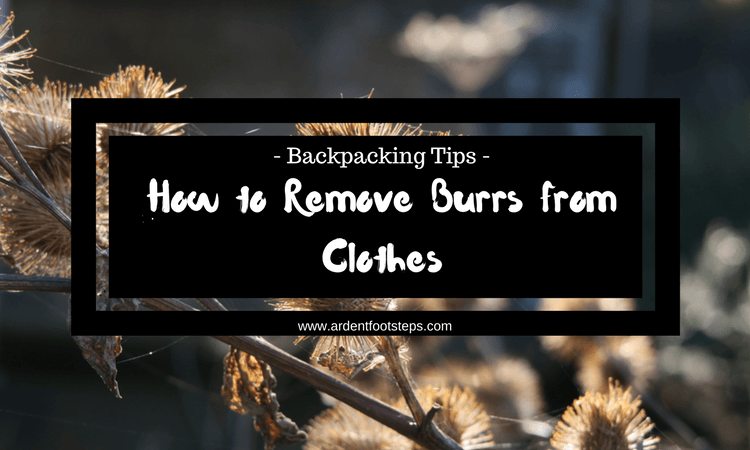 How to Remove Burrs from Clothes