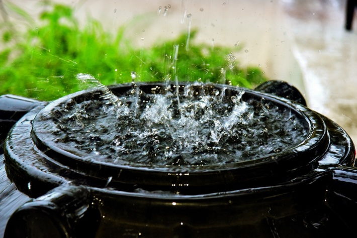 Advantages and disadvantages of drinking rainwater